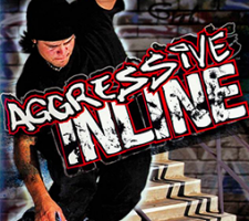 "Computer game ""Aggressive Inline"" 